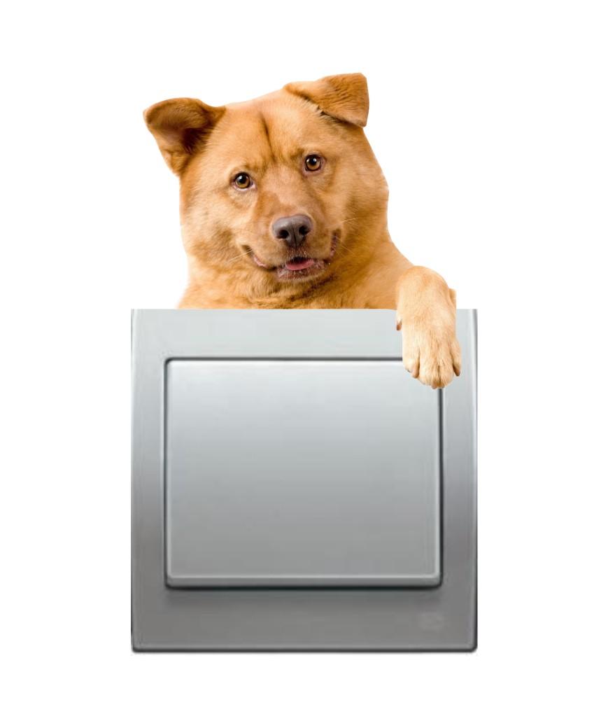 Pegatina Mascota para interruptor enchufe
